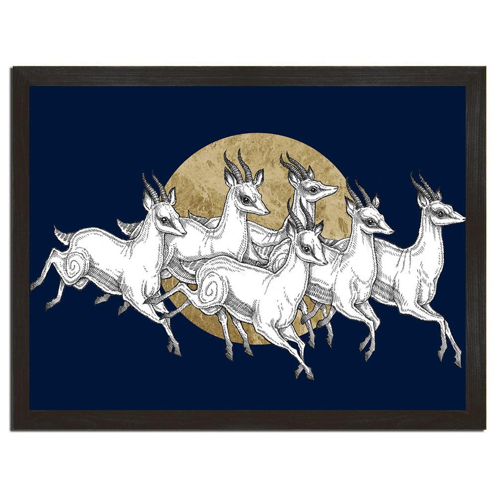 gazelles poster.jpg