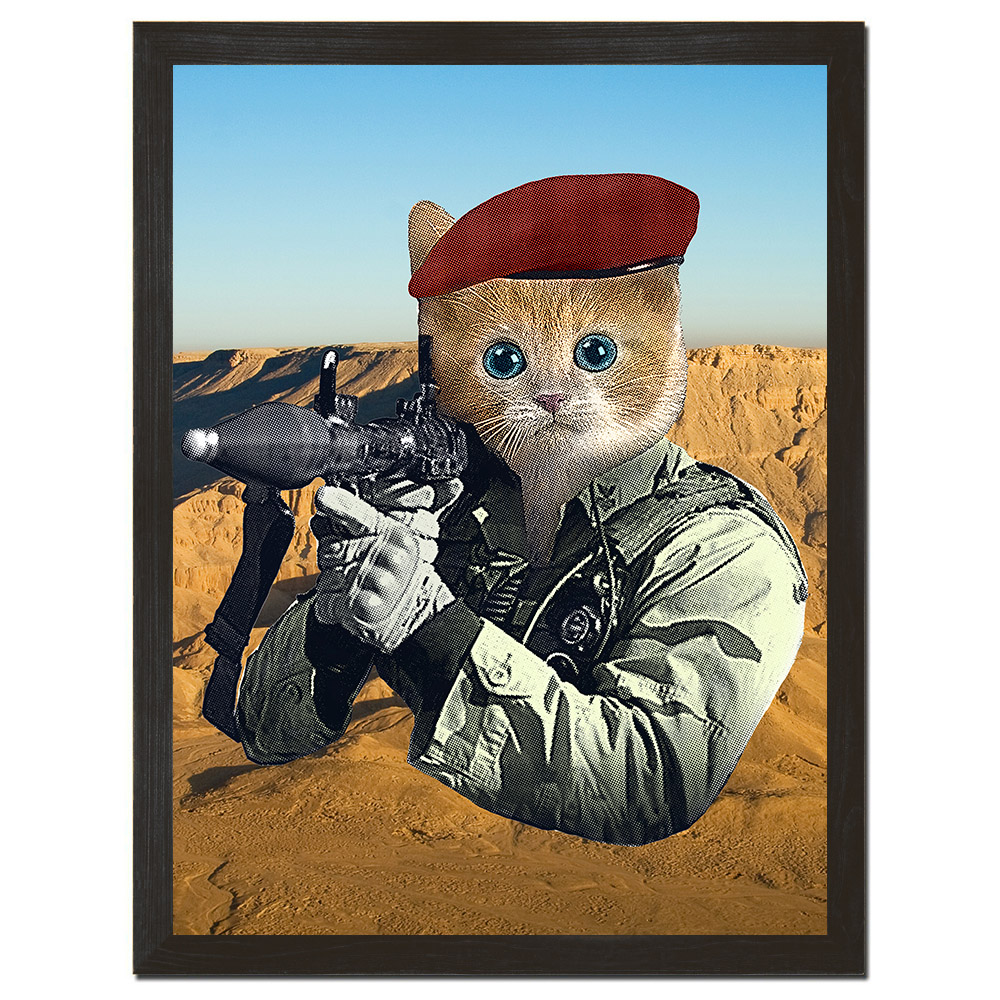 gi kitty.jpg