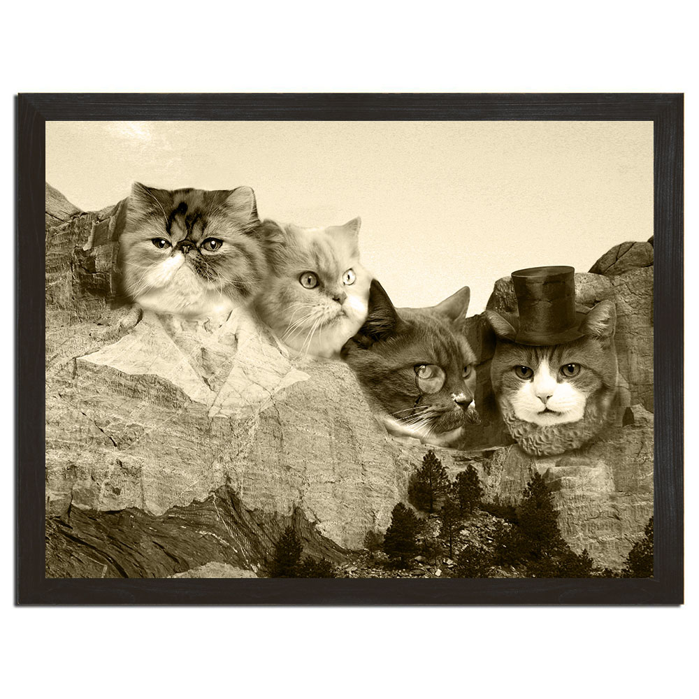 meowmore poster.jpg