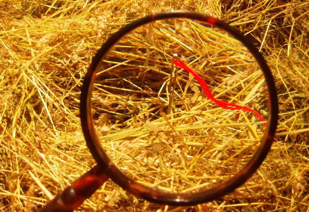 needle haystack.JPG