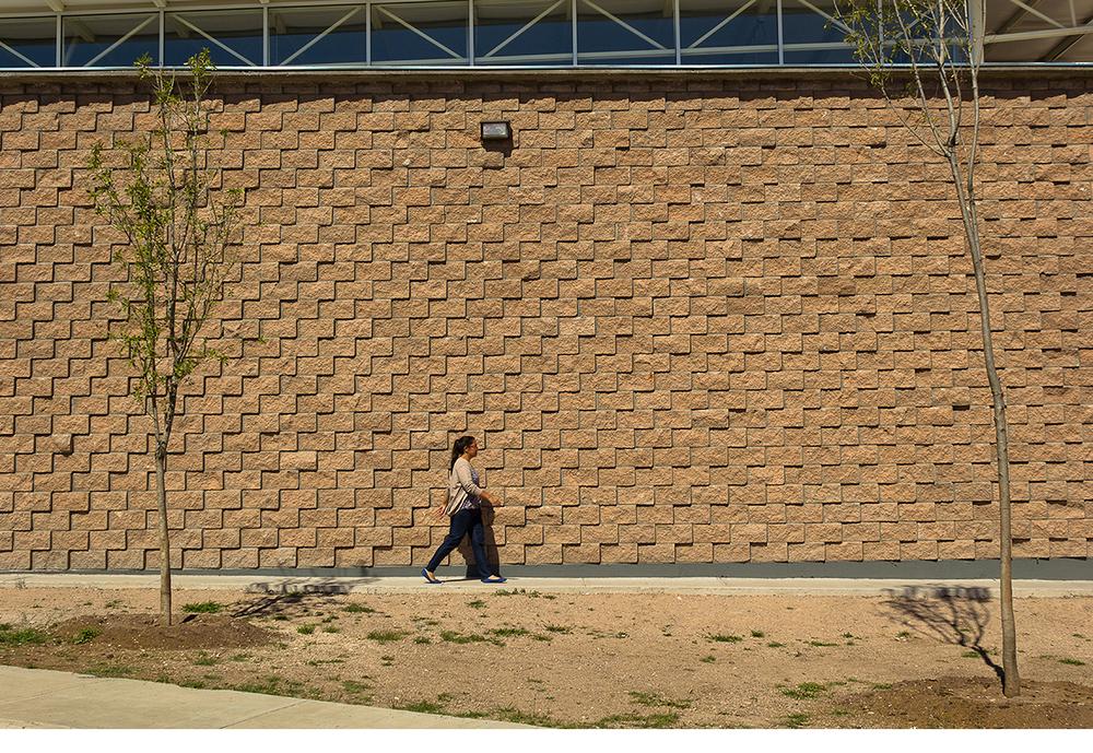 02 Box wall_Guadalupe Campos.jpg