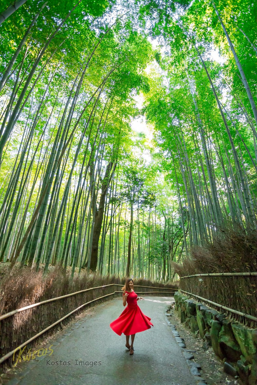 20160904-IMG_7117-Bamboo Forest.jpg