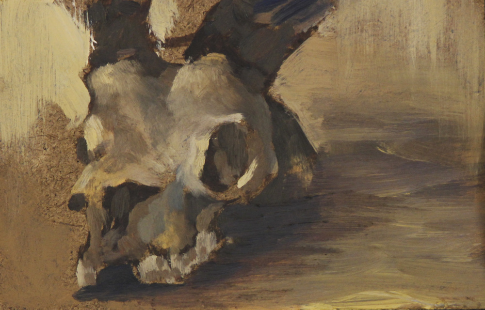 Anteloupe Skull.jpg