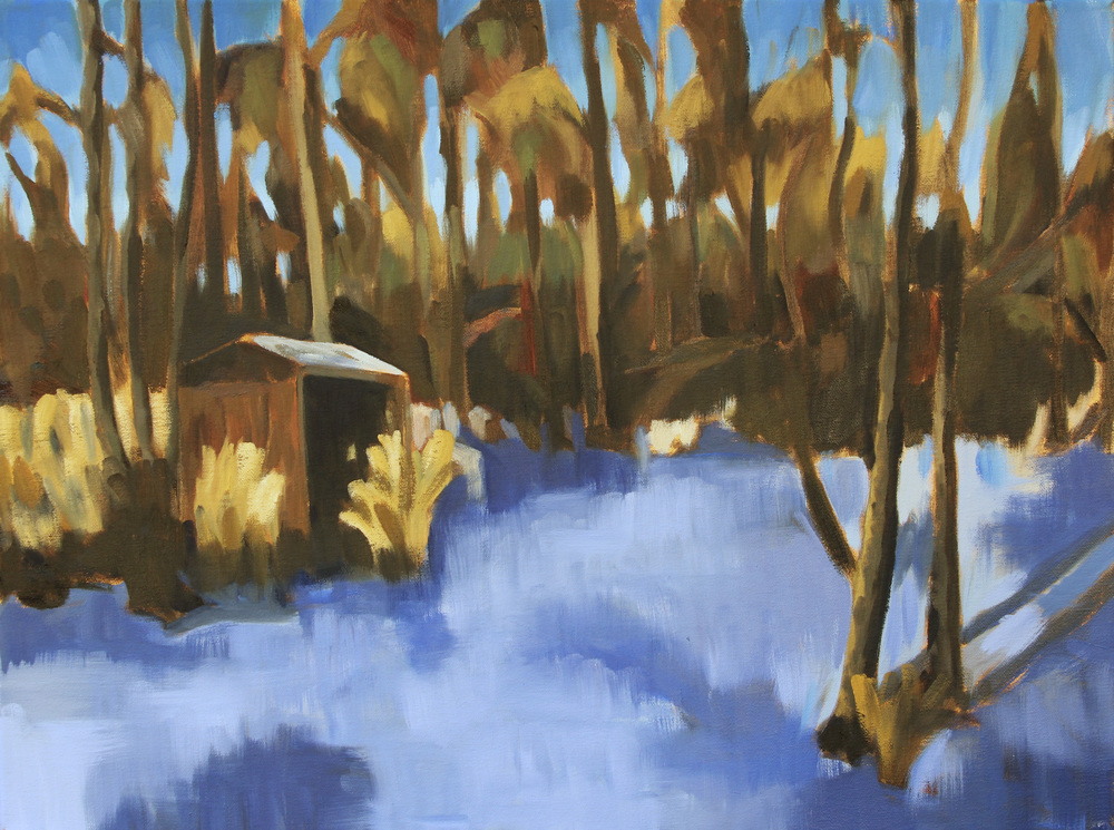 Snowy Landscape 1 - Blake Benfield.jpg