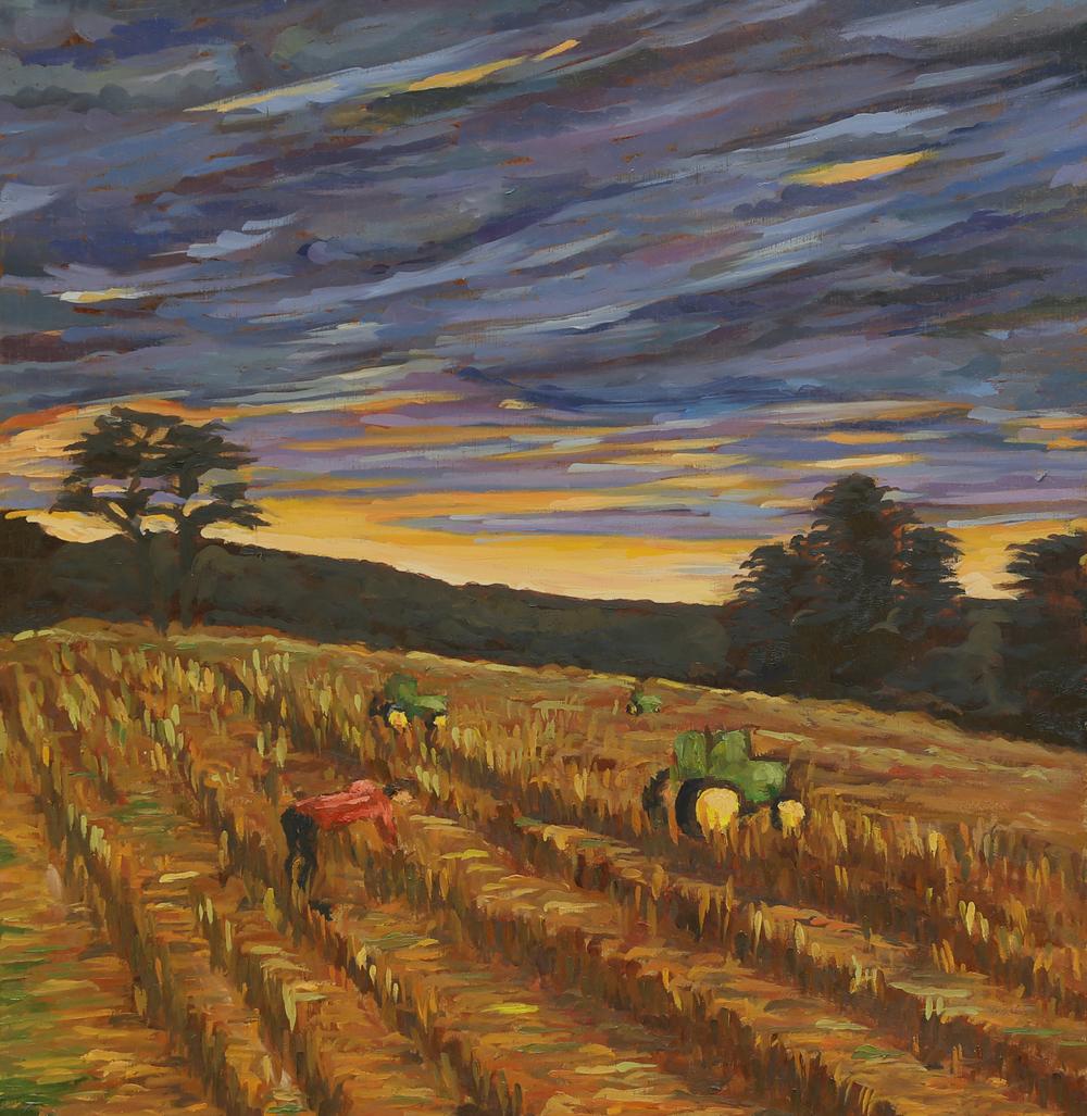 Jack Dearing - Sunset - 12 x 12.jpg