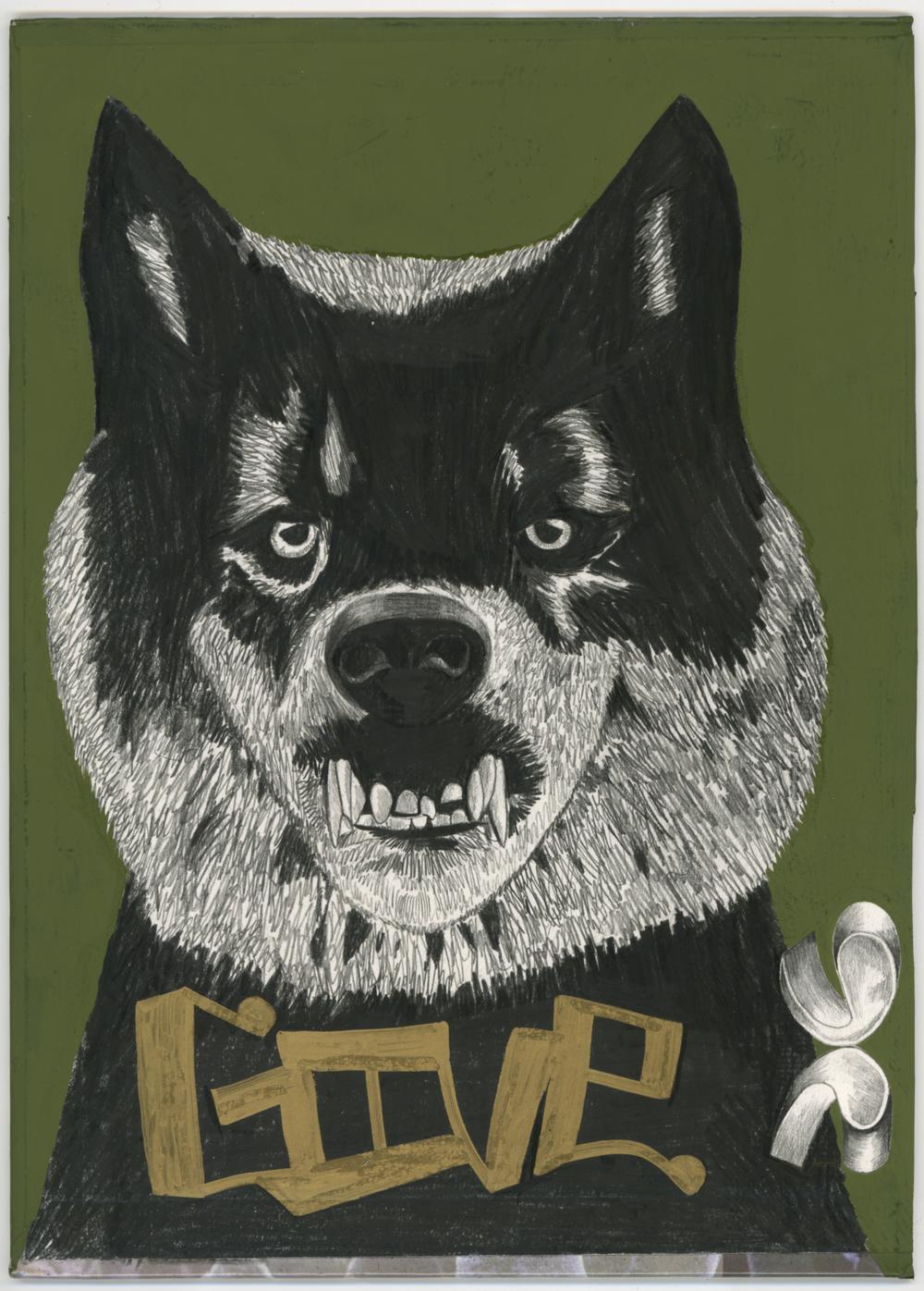 wolfdog.jpg