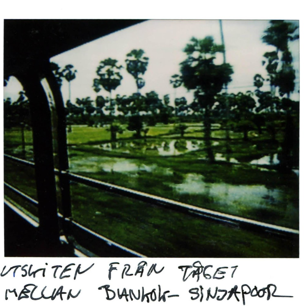 The view from the train between Bangkok and Singapore