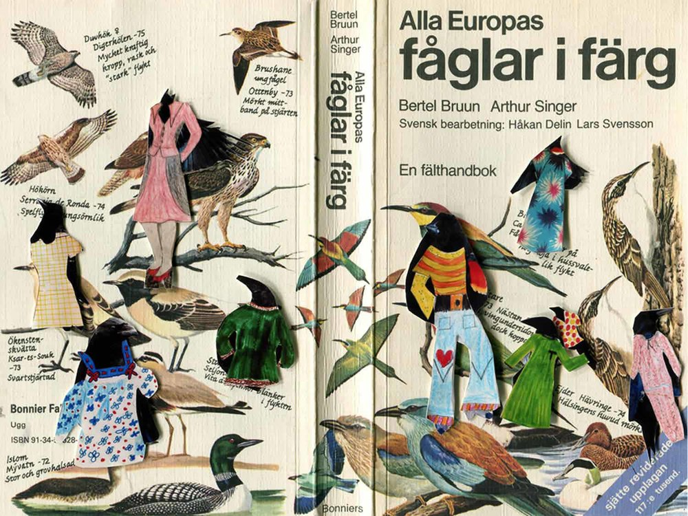 a good BIRD BOOK to have in your pocket ..when out watching  62 pages 12x20 cm