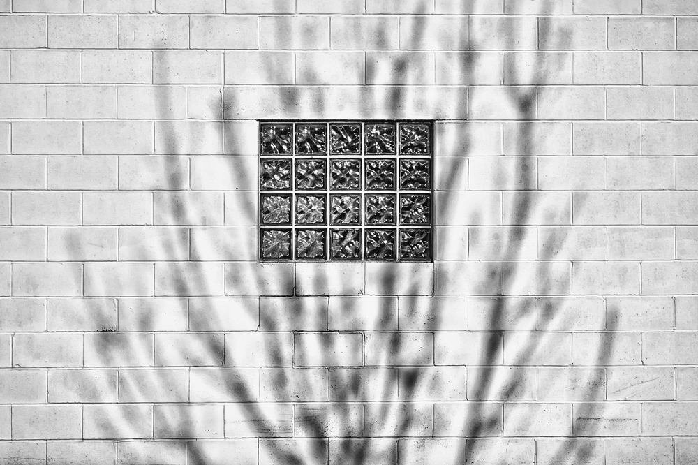 Window and Tree, Study No 1 – Lebanon, Ohio – 2012