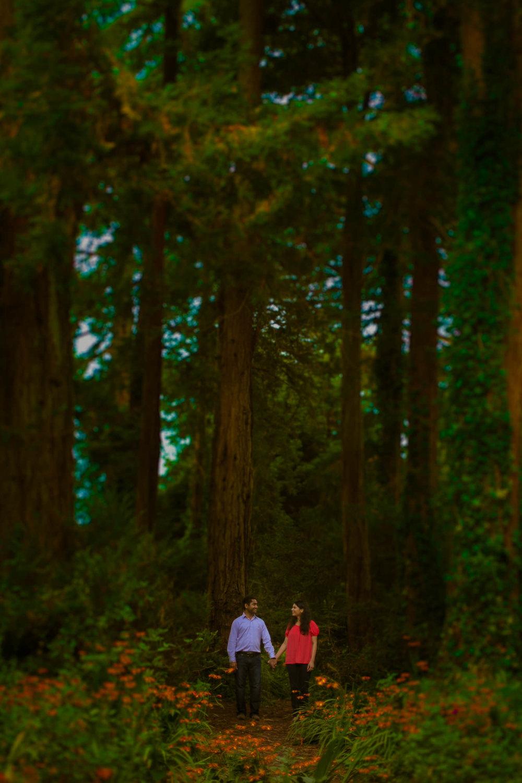 D&N_www.samandekta.com-CoupleShoot-1.jpg