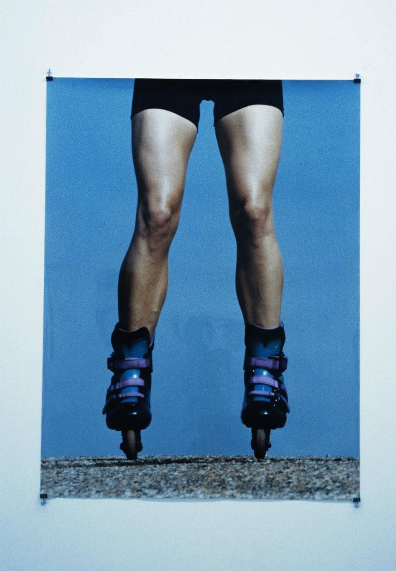 LegsRollers.jpg