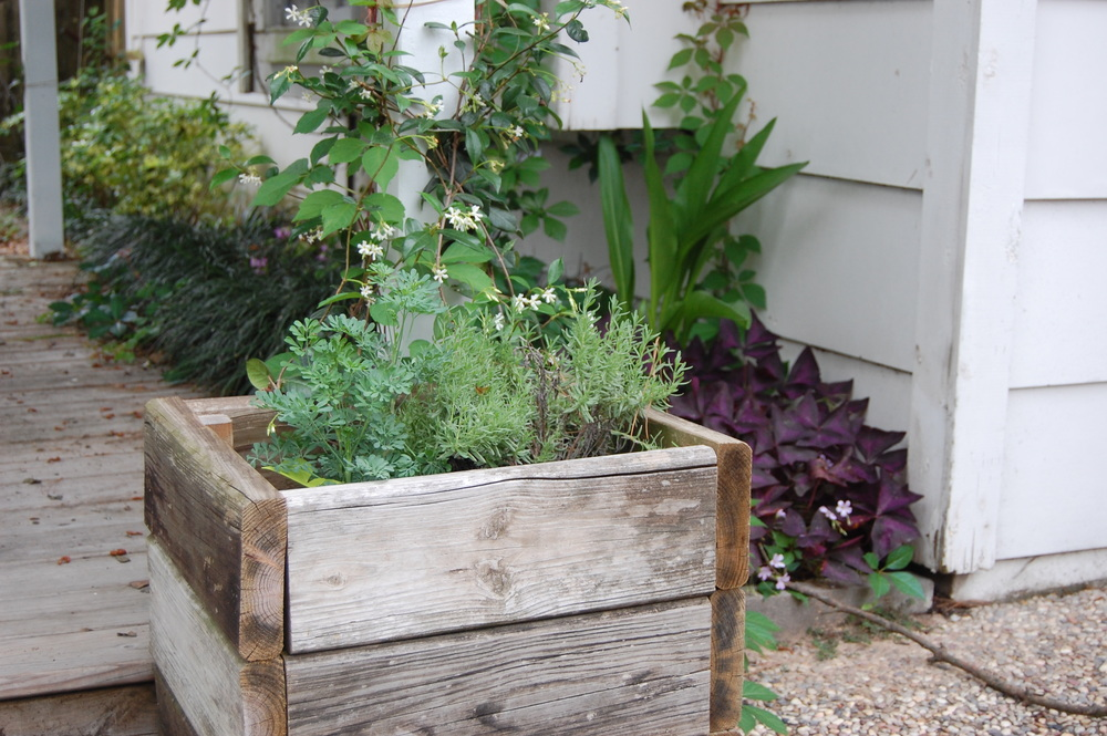 Free fence-posts-turned-planters by my talented husband
