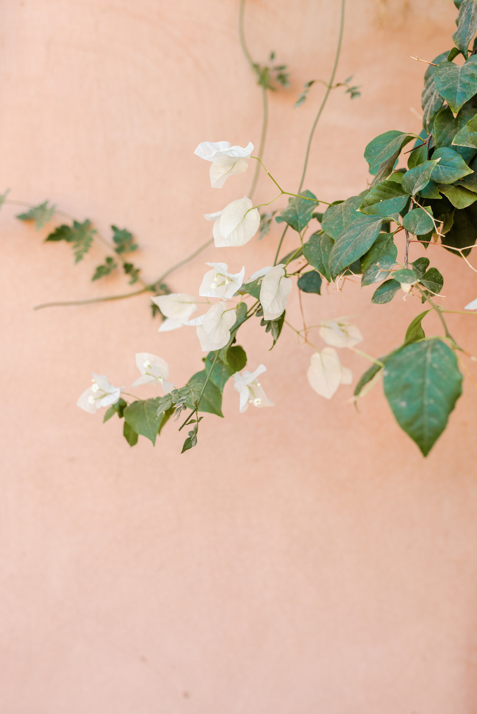 Emma_van_der_Schelde_Photography-59.jpg