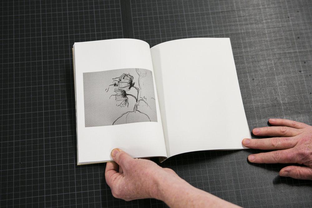 dabf2016_book-11.jpg