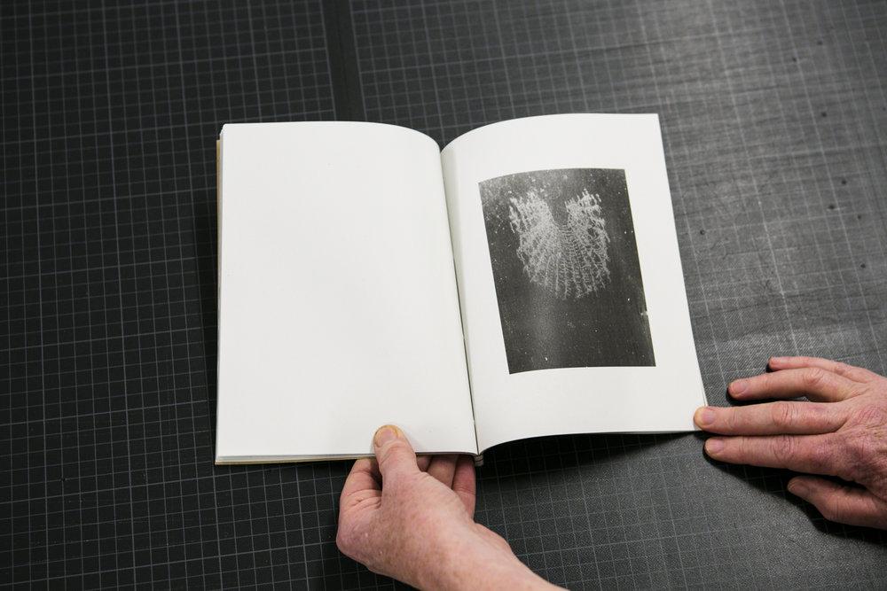 dabf2016_book-13.jpg