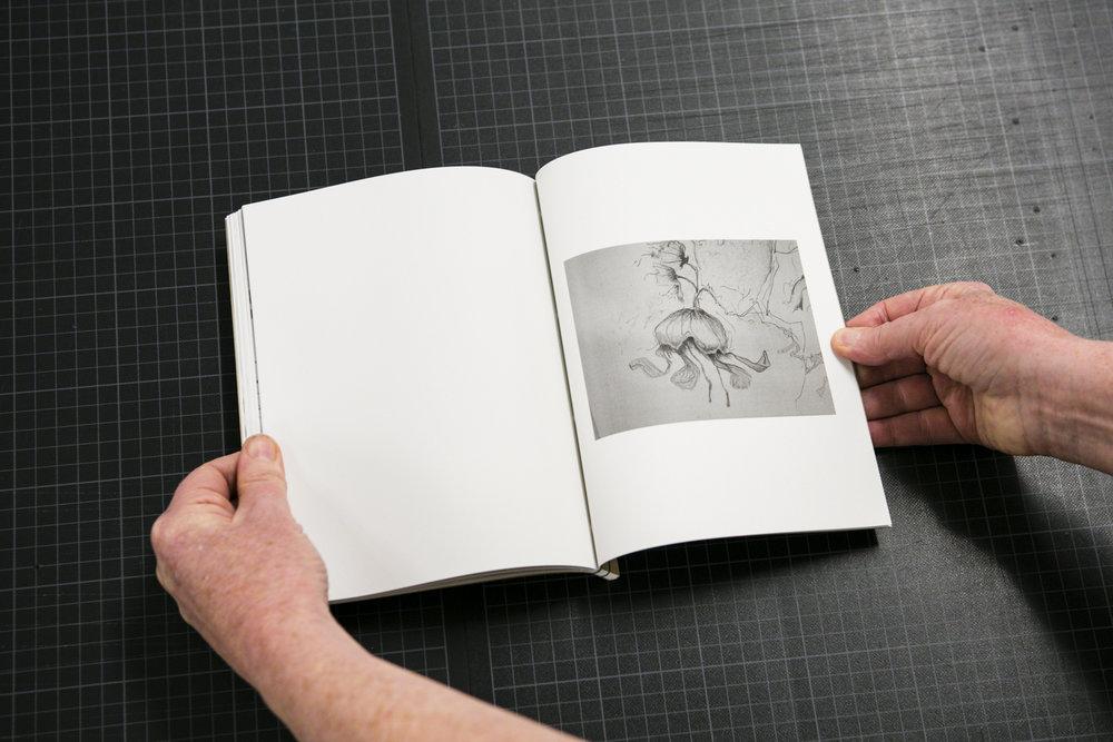 dabf2016_book-19.jpg