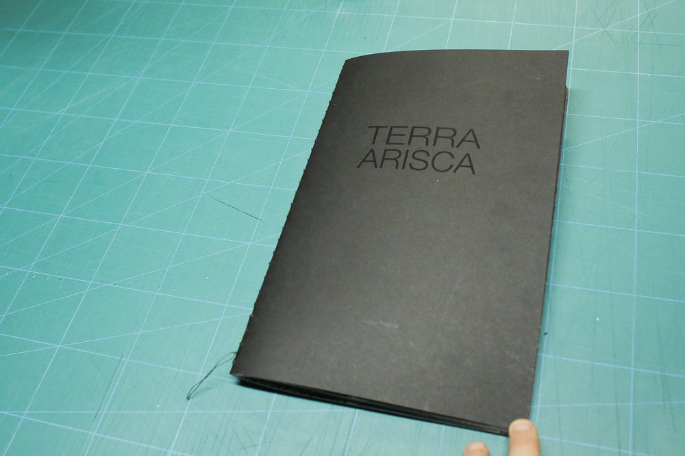 TERRA ARISCA - DIEGO FABRO
