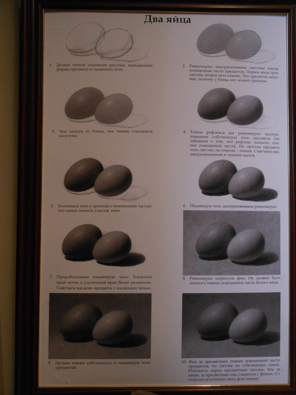 instructions on drawing and modelling an egg