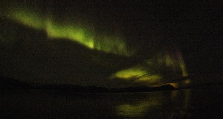 Northern lights, Greenland. (photo credit: Alexandra Rose)