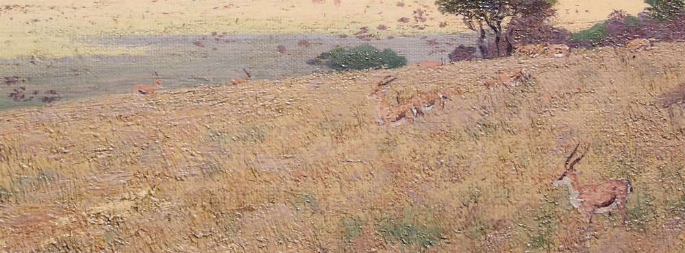 Detail of Serengeti plains: Gazelles in the grass.