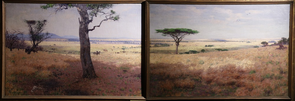 Serengeti plains, WIlliam Leigh