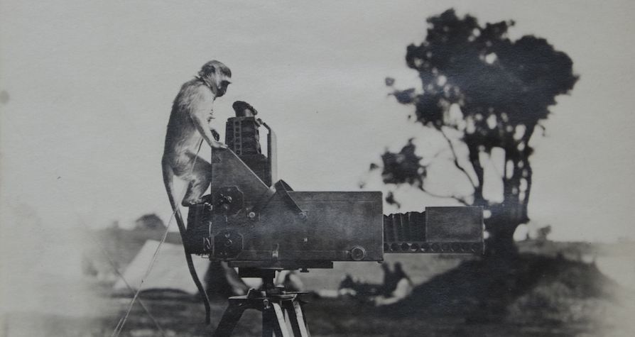 Curiosity is sparked, somewhere in Africa, 1920's