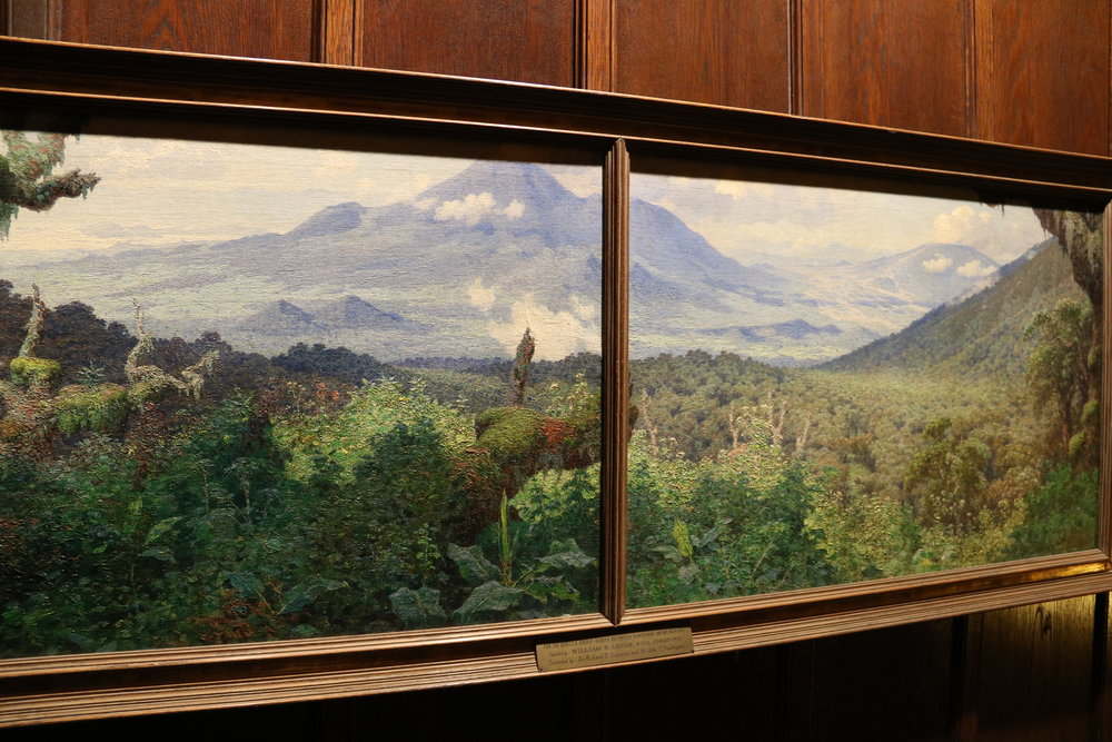 William Leigh's view of the two volcanos, for the Gorilla group. Explorer's club, NYC.