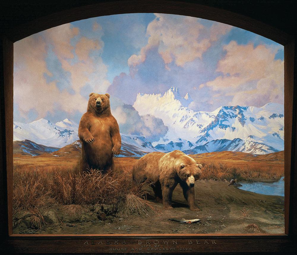 bear-diorama.jpg