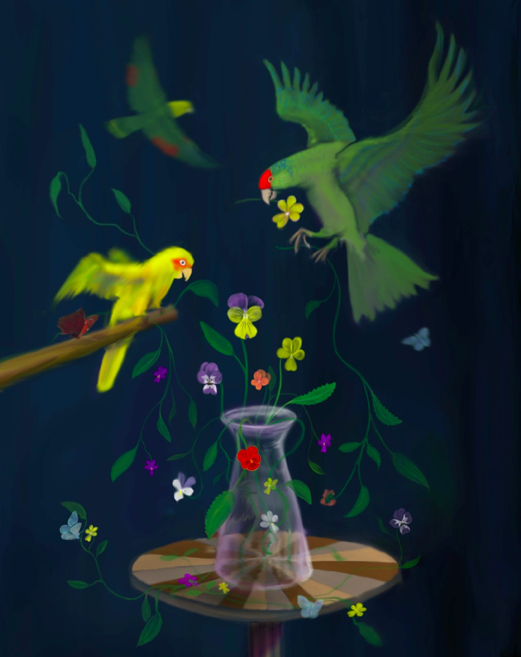 'Still Life with Parrots'© Kevin low