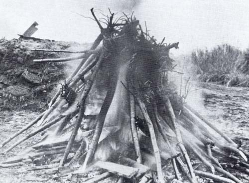 28 January, 1910. Burning of diseased cherry trees. [photo: National Arboretum]