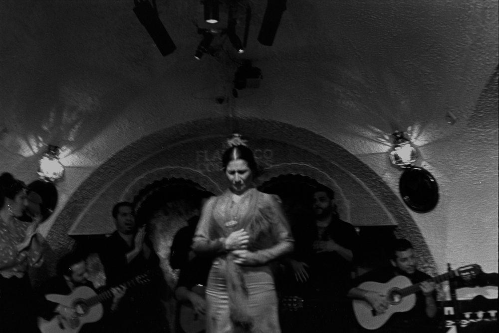 flamenco dancer.jpg