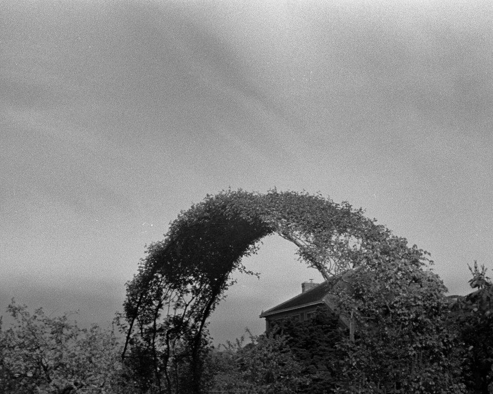Monet's Home 2.jpg