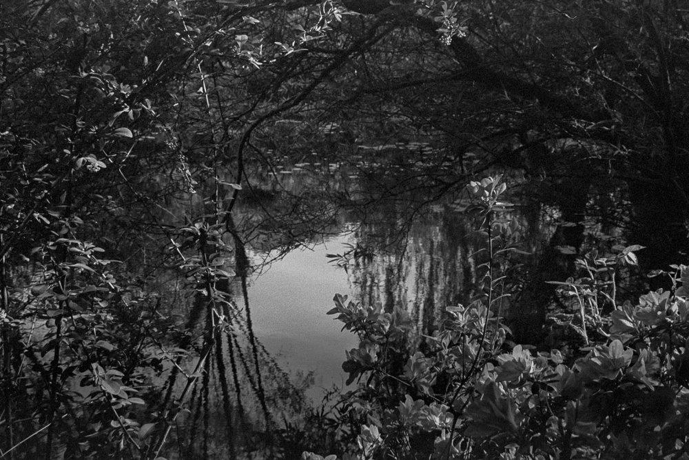Monet's Home 1.jpg