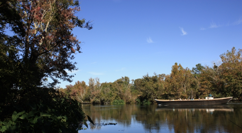 Cruise the Augusta Canal