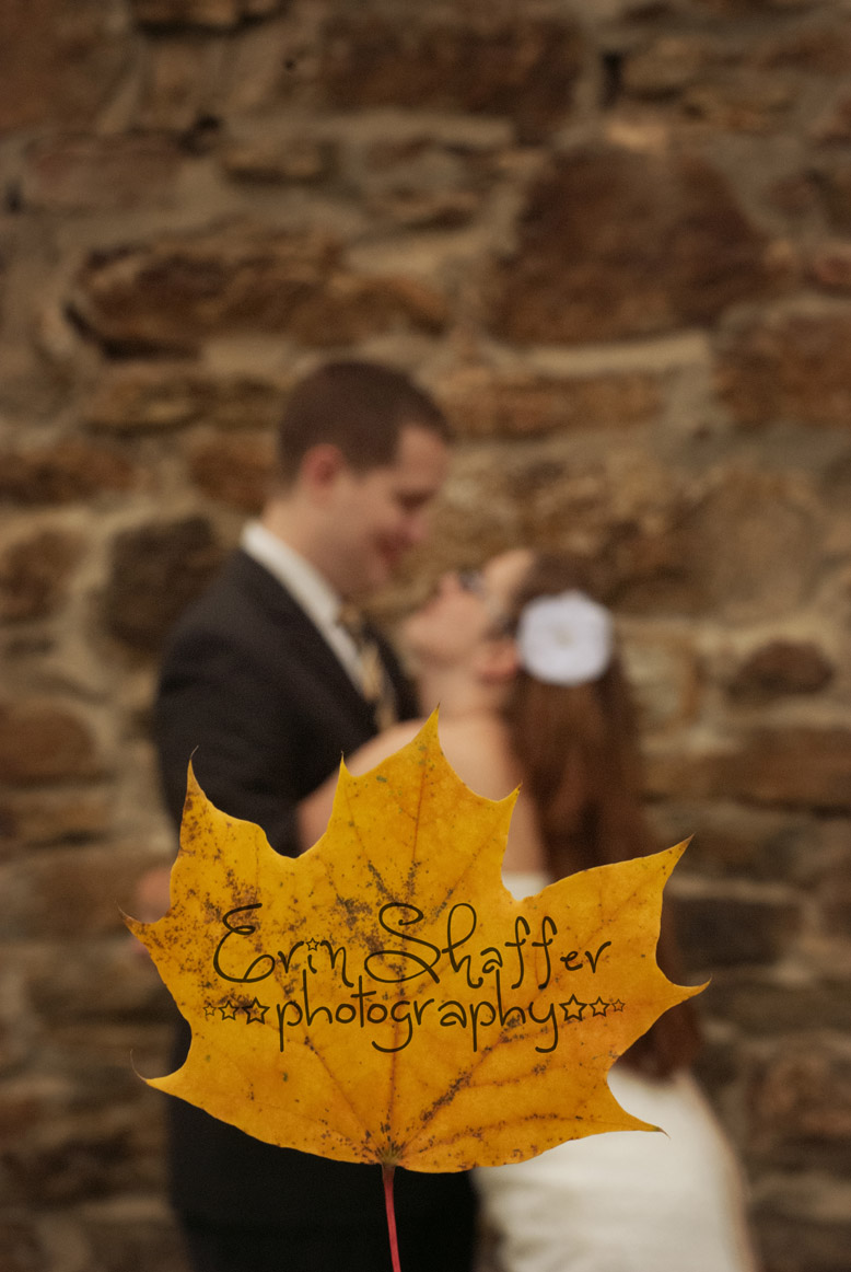 Central PA Wedding and engagement photography.jpg