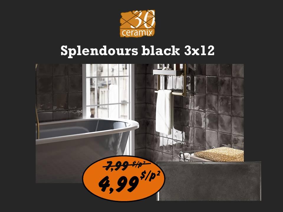 Splendours black 3x12