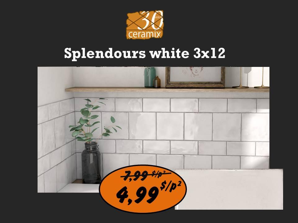 Splendours white 3x12
