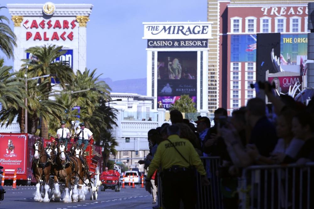 The Budweiser Clydesdales trot past Paris Las Vegas on the Las Vegas Strip to celebrate the opening of their new Beer Park Saturday, Jan. 30, 2016. CREDIT: Sam Morris/Las Vegas News Bureau