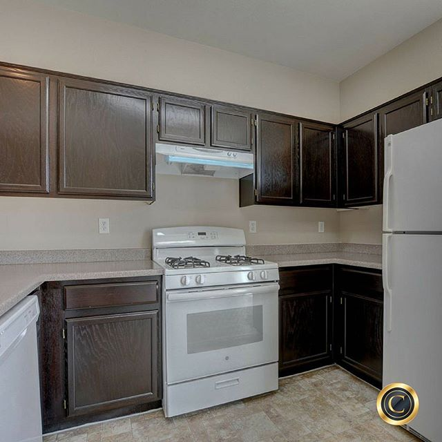Marvelous 1183sq/3 bedroom home for $169,000! Open floor plan, breakfast bar, centrally located, and move-in ready! Call Kyle at 702-823-0840.⠀ -⠀ Presented by Shawn and Kyle Cunningham, Cunningham Real Estate Group at Re/MAX Advantage⠀ #OurBrandisService #lasvegasrealestate #lasvegasrealtor #lasvegashomes#homesforsale #sellmyhouse#cunninghamgroup #sellmyhouse #listings#beautifulhomes #vegasrealestate #remax#curbappeal #investmentproperty