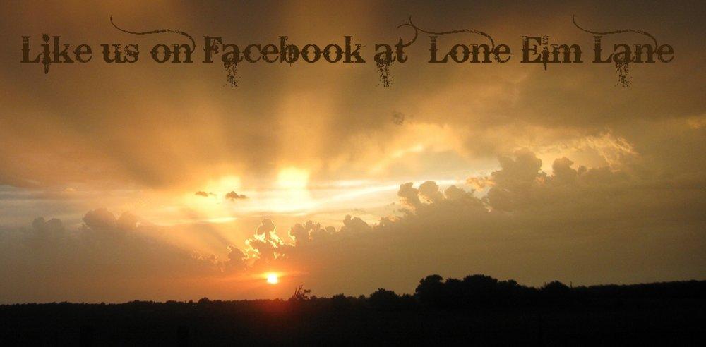 Sunset 4x8.jpg