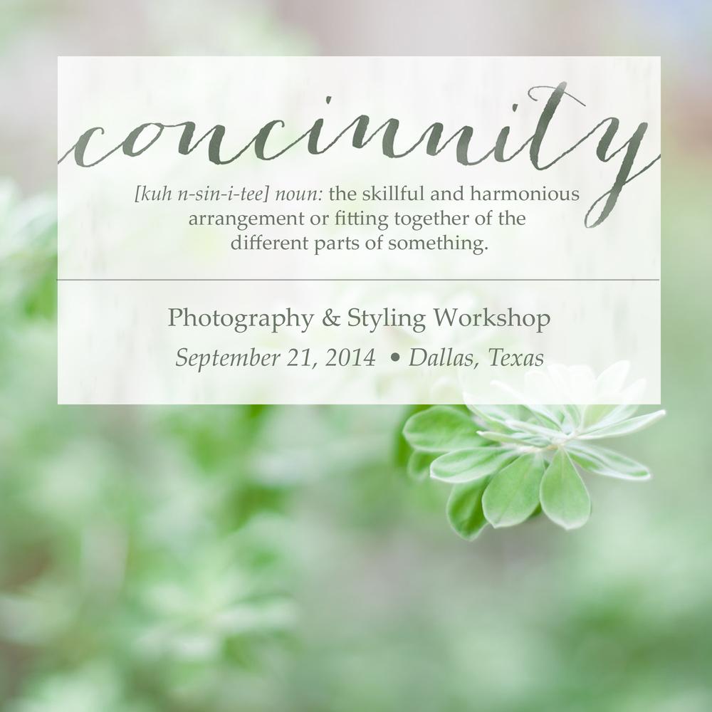 concinnity3.jpg