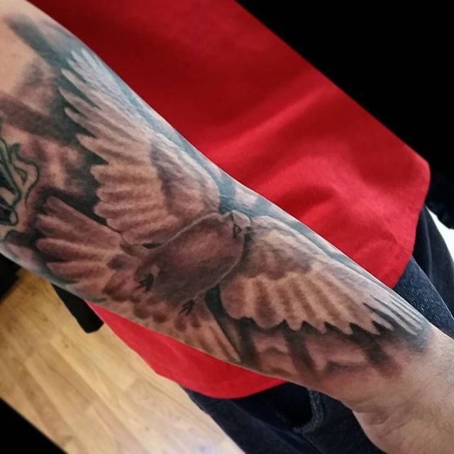 Dove the other day...tuff angle on pic.... thanx for lookin n likin..GET@ME4INK....#dove#holyspirit#protector#familia#family#tattoo#ink#tattoolife#inked#inkaddict#cooltattoos#chicagostatetattoo#chicagotattooartist#chicagotattooshop#art#bodyart#skinart#chicago#westtown#urkrainianvillage#humboldtpark#wickerpark#instagood#art#skinart#bodyart#love