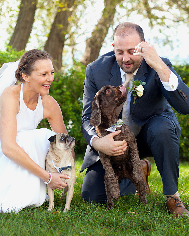 Bride Groom Dogs Laughing Pug Cocker Spaniel South Bend Indiana Michigan Chicago - joannaFOTOGRAF Joanna Reichert.jpg