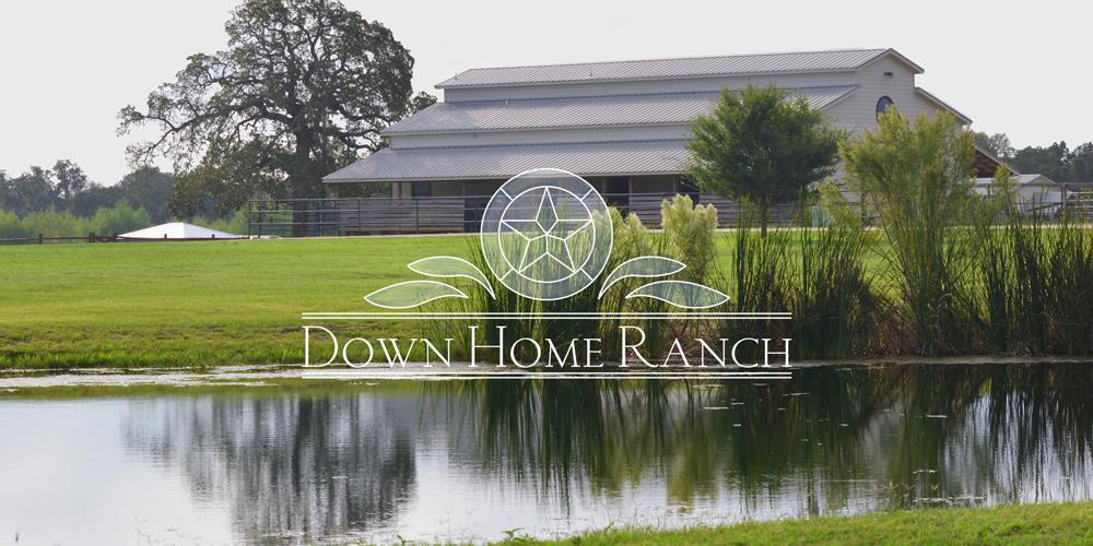 DHR-logo-barn.jpg