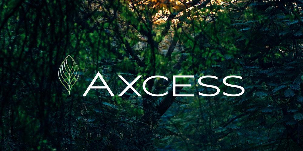 AXT-logo-02.jpg