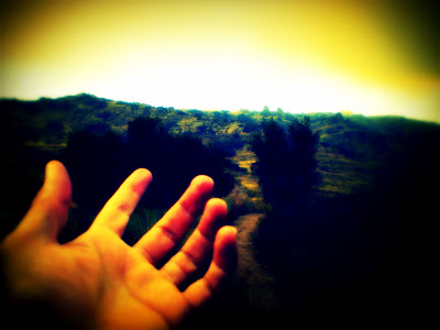 morning_hand.jpg