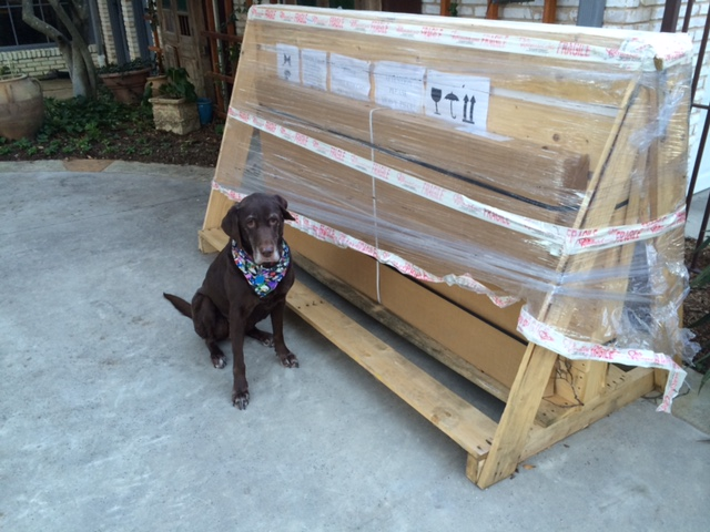 The GIANTcrate that was delivered to our house! It took my sons, Grant and Andrew, to help me unload it... along with the supervision of Bluebonnet.