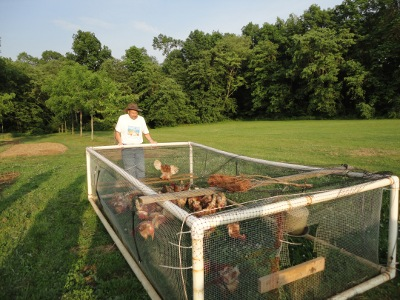 A moveable chicken pen