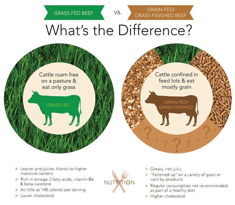 grass-fed-difference-768.jpg