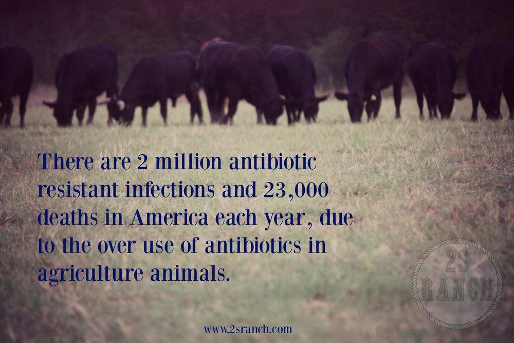 antibiotic resistent infections.jpg